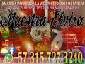 MAESTRA ELVIRA 3157273240 REALIZO TODA CLASE DE TRABAJOS AL NIVEL NACIONAL Y INTERNACIONAL