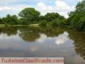 Terreno en Aguachica Cesar, excelente ubicación, totalmente Plano, Ruta del Sol, 32 hectár