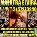 BRUJA VIDENTE ELVIRA TRABAJOS 100% EFECTIVOS Y GARANTIZADOS  +573157273240