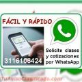Profesor Contabilidad Finanzas Excel Estadistica Medellin a domicilio Clases particulares