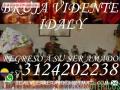 BRUJA VIDENTE IDALY +57312402238 AMORES REBELDES YO LOS DOBLEGO