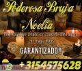 TRABAJOS GARANTIZADOS  MAESTRA NOELIA LA DIOSA DEL AMOR 3154575628