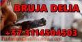 QUIERES QUE TU EX REGRESE AMARRES DE AMOR CON LA BRUJA DELIA +573114504503