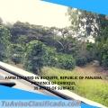 Farm in Boquete Republic of Panamá, 39 acres