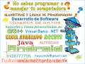 Office, Excel avanzado, Algoritmos, Java, Android, C++, Visual Basic .NET, VBA